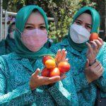 Implementasi Program Hatinya PKK, Rumah Sehat kembali Ditinjau